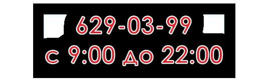 +7 (812) 929-69-93